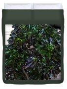 Green-black Cucculent Plant. Big Bush Duvet Cover