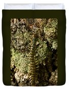 Green Centipede Duvet Cover