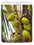Green Coconut Duvet Cover