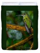 Green-crowned Brilliant Hummingbird Duvet Cover