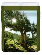 Green Desert Duvet Cover