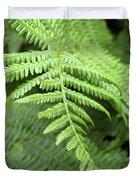 Green Fern 2 Duvet Cover