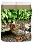 Green Head Mallard Duck 2 Duvet Cover