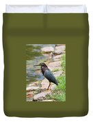 Green Heron-1 Duvet Cover
