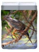 Green Heron Brazos Bend State Park Duvet Cover