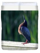 Green Heron Calling Softly In The Early Morning Duvet Cover
