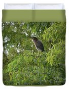 Green Heron In Tree Duvet Cover