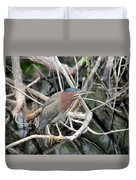 Green Heron On A Branch Duvet Cover