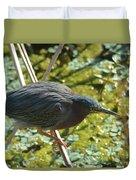 Green Heron On Stilts Duvet Cover