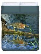 Green Heron Prowl Duvet Cover
