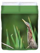 Green Heron Watches Duvet Cover