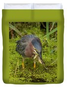 Green Heron With Prey Duvet Cover