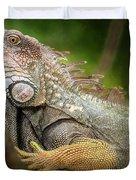 Green Iguana Costa Rica Duvet Cover