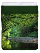 Green River Duvet Cover by Evgeni Dinev