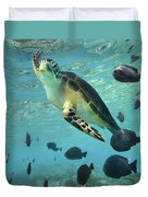 Green Sea Turtle Balicasag Island Duvet Cover