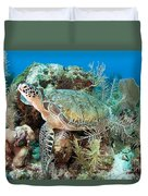 Green Sea Turtle On Caribbean Reef Duvet Cover