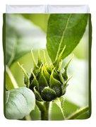 Green Sunflower Bud Duvet Cover