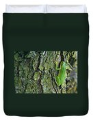 Green Tree Frog On Lichen Covered Bark Duvet Cover