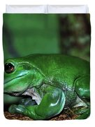 Green Tree Frog With A Smile Duvet Cover