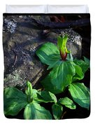 Green Trillium At Sunrise Duvet Cover