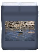 Green-winged Teal 7 Duvet Cover