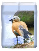 Green Winged Wood Duck 1 Duvet Cover