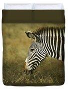 Grevy's Zebra Duvet Cover