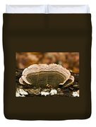 Grey Bracket Fungi Duvet Cover