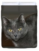 Grey Cat With Yellow Eyes Duvet Cover