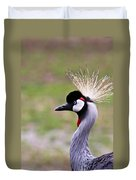 Grey Crowned Crain Of Africa Duvet Cover