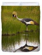 Grey Crowned Crane - Signed Duvet Cover