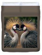 Grey Crowned Cranes Of Africa Duvet Cover
