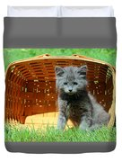 Grey Fluffy Kitten In Market Basket Duvet Cover