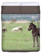 Grey Foal On Pasture Farm Scene Duvet Cover