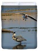 Grey Heron Being Mobbed Duvet Cover