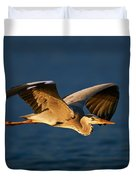 Grey Heron In Flight Duvet Cover by Johan Swanepoel