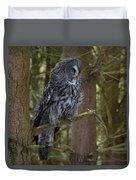 Grey Owl 4 Duvet Cover
