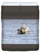 Common Seal Duvet Cover