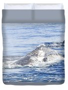 Grey Whale 2 Duvet Cover