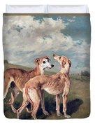 Greyhounds Duvet Cover