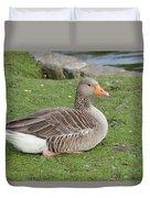 Greylag Goose Resting Duvet Cover