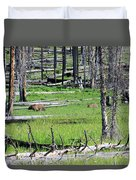 Grizzly Bear And Cub Cross An Area Of Regenerating Forest Fire Duvet Cover