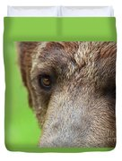 Grizzly Bear Arctos Ursus Duvet Cover