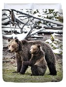 Grizzly Cub Holding Mother Duvet Cover