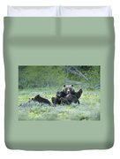 Grizzly Romp - Grand Teton Duvet Cover by Sandra Bronstein