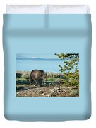 Grizzly Sow At Yellowstone Lake Duvet Cover
