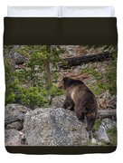 Grizzly Sow In Yellowstone Park Duvet Cover