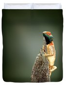 Ground Agama Sunbathing Duvet Cover