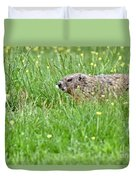 Groundhog In A Field Of Flowers Duvet Cover