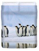 Group Of Emperor Penguins Duvet Cover